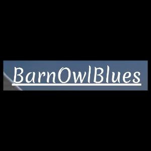 Barn Owl Blues (Netherlands) review of Where Are You Now?